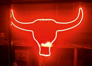 Exposed-neon-Bulls-head